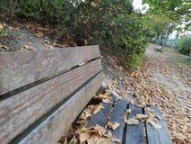 Les gabarits en bois en automne se garent images libres de droits