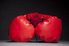 Les gants et le rouge de cadre se sont levés Photographie stock