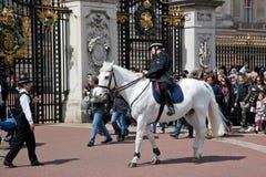 Les gardes royales britanniques effectuent le changement de la garde dans le Buckingham Palace Photographie stock libre de droits
