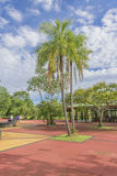 Les gens à l'entrée de parc d'Iguazu Photographie stock libre de droits
