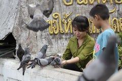 Les gens alimentent la nourriture aux oiseaux Photographie stock