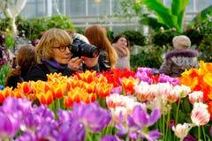 Les gens assistent au marché de fleurs de ressort au temps de jour Photos libres de droits