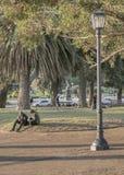 Les gens au parc à Montevideo Uruguay Photos libres de droits
