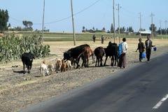 Les gens aux routes de l'Ethiopie en Afrique Images stock