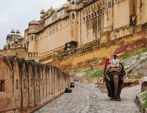Les gens avec des éléphants chez Amber Fort à Jaipur, Inde Images stock