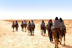 Les gens avec des chameaux Photographie stock