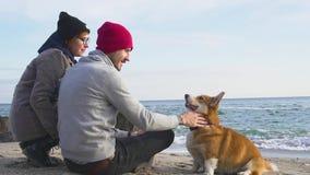 Les gens avec le chien de corgi sur la plage clips vidéos