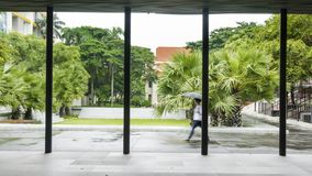 Les gens avec le parapluie marchent l'espace piétonnier extérieur avec l'arbre GA Image libre de droits