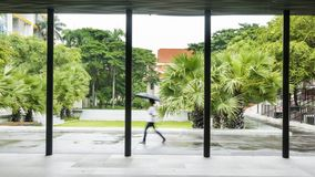 Les gens avec le parapluie marchent l'espace piétonnier extérieur avec l'arbre GA Photo libre de droits