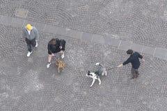 Les gens avec leurs animaux familiers en Italie Photos libres de droits