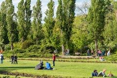 Les gens ayant le pique-nique et jouant des jeux dans le parc public de Herastrau Photographie stock