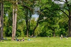 Les gens ayant le pique-nique et jouant des jeux dans le parc public de Mogosoaia Image libre de droits