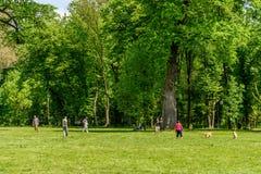 Les gens ayant le pique-nique et jouant des jeux dans le parc public de Mogosoaia Photos stock