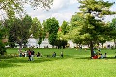 Les gens ayant le pique-nique et jouant des jeux dans le parc public de Mogosoaia Images stock