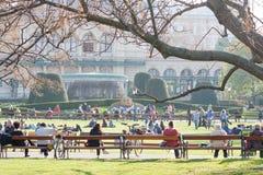 Les gens détendant dans Stadtpark à Vienne, Autriche au printemps Images libres de droits