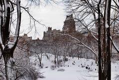 Les gens dans Central Park neigeux, New York Photographie stock