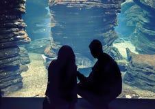 Les gens dans l'oceanarium Photographie stock libre de droits