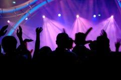 Les gens dans le concert photographie stock libre de droits