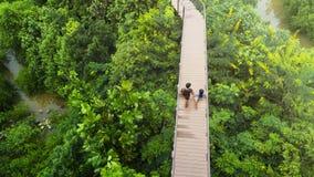 Les gens de l'homme et de la fille dans la vue supérieure marchent au passage couvert en bois de ciel Photo stock
