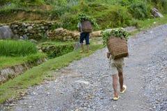 Les gens de la PA de SA au Vietnam Image libre de droits