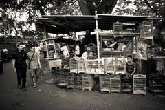 Les gens des marchés d'oiseau de Malang, Indonésie Images libres de droits