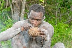 Les gens du monde - débroussailleur africain photo stock