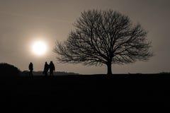 Les gens et l'arbre silhouettés au coucher du soleil Photo stock