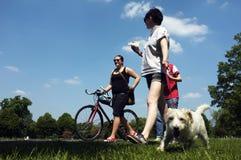 Les gens et un chien marchant en parc Photographie stock libre de droits