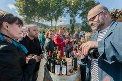 Les gens goûtant le vin aux stocks des sociétés privées de vin en capitale de la Géorgie photographie stock