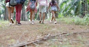 Les gens groupent avec le trekking de sacs à dos sur Forest Path, les jeunes hommes de vue arrière de dos et la femme sur la haus banque de vidéos