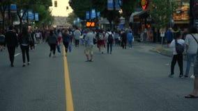 Les gens, les hommes, les femmes, et les enfants marchant le long de la route banque de vidéos