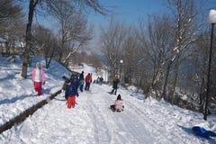 Les gens jouant dans la neige Photographie stock libre de droits