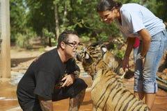 Les gens jouent avec le tigre de bébé indo-chinois dans Saiyok, Thaïlande Images libres de droits
