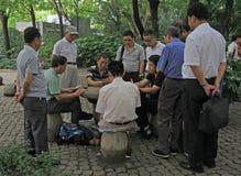 Les gens jouent des cartes en parc de Changhaï Photos libres de droits