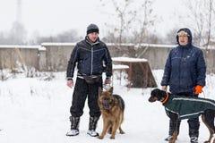 Les gens marchant avec des chiens en hiver photo stock