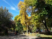 Les gens marchant en parc - automne Photos libres de droits