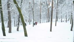 Les gens marchant en parc en hiver banque de vidéos
