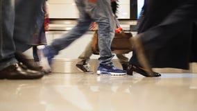 Les gens marchant sur l'escalier mobile avec le bagage dans l'aéroport international, se ferment vers le haut du tir des jambes e Images stock