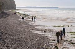 Les gens marchant sur le d'Opale de Cote marchent avec les falaises blanches près d'Audresselles, France Photos libres de droits