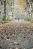 Les gens marchant sur une route de campagne dans la zone rurale entourée par le tre Images libres de droits