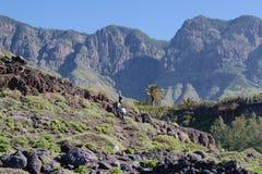 Les gens marchant vers le haut des falaises sauvages Image libre de droits