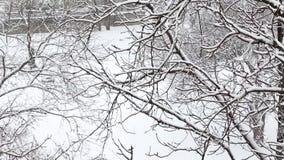 Les gens marchent le long d'une rue neigeuse de ville le jour d'hiver Vue supérieure par les branches d'arbre couvertes de neige clips vidéos