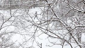 Les gens marchent le long d'une rue neigeuse de ville le jour d'hiver Vue supérieure par les branches d'arbre couvertes de neige banque de vidéos