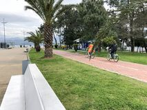 Les gens montent un vélo le long d'une allée avec les palmiers verts en parc en mer tropicale chaude La Géorgie, Tbilisi, le 16 a images libres de droits