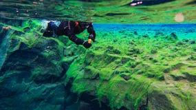 Les gens naviguant au schnorchel et plongeant dans l'eau glaciaire clair comme de l'eau de roche bleue en parc national Islande d image libre de droits