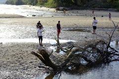 Les gens passent le temps de vacances d'été sur la plage sablonneuse blanche près du bois de flottage Image libre de droits