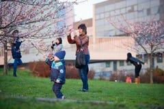Les gens prenant des photos en s'épanouissant Sakura Photographie stock libre de droits