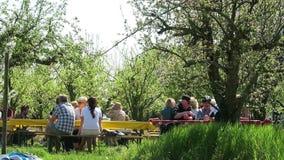 Les gens s'asseyant sous des essais de floraison de pomme apprécient le printemps Werder banque de vidéos