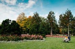 Les gens s'asseyent sur le banc en parc de Rosengarten en automne tôt photo stock