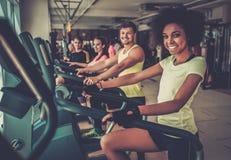 Les gens s'exerçant sur de cardio- machines d'une formation Photographie stock